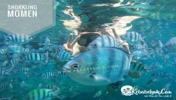 Ini alasan Wisatawan Belitung wajib mengunjungi Pulau Lengkuas