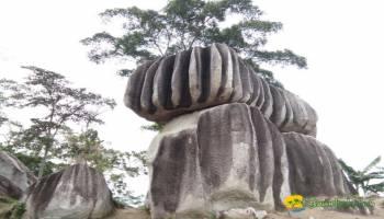 "Batu Belimbing Toboali ""Karya Nyata Sang Pencipta"""