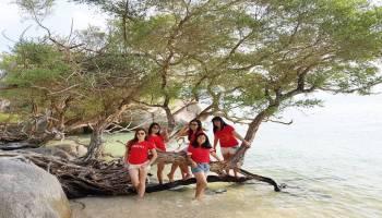 Pulau Putri Ikan-ikan Centil di Pantai Nan Jernih Bisa Dilihat Langsung Dari Atas Perahu